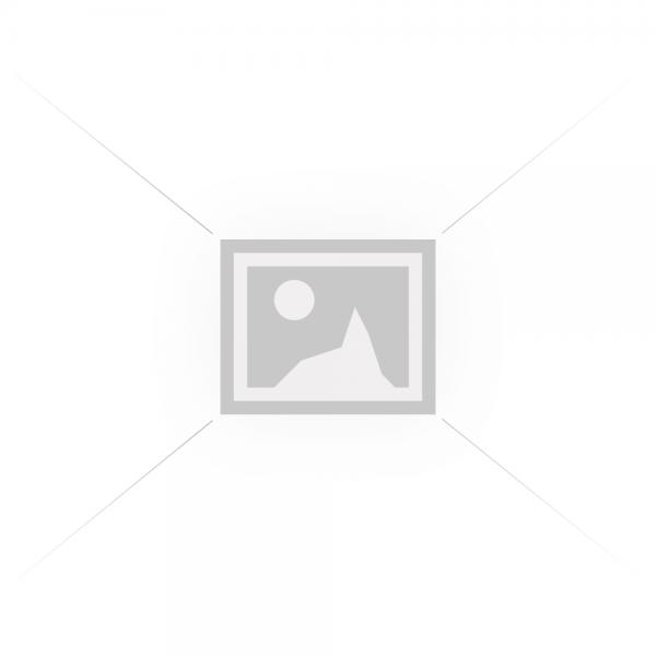 манометр PG-SS40R